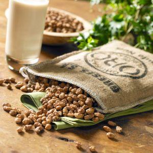 Tiger nuts, Image Credit: La Tienda.com